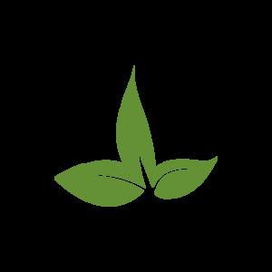 logo jusletter it